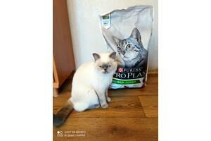 Сухой корм для стерил.кошек 10кг, утка, печень(откр.упак)