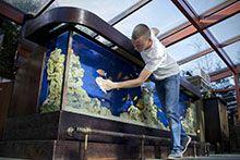 Догляд за рибками