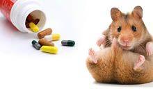 Витамины и минералы для грызунов