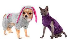 Одяг для тварин (Загальний)