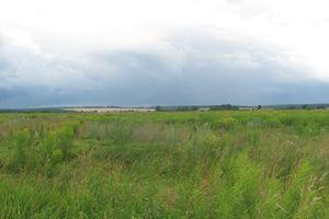 Куплю землю сельскохозяйственного назначения на Мизяковских Хуторах без посредников