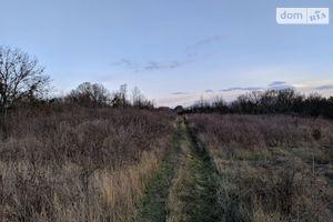 Куплю земельну ділянку в Лохвиці без посередників