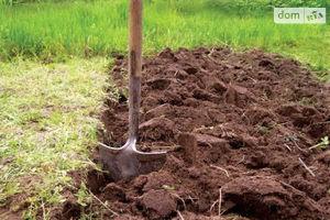 Сдается в аренду земельный участок 5.5 соток в Черниговской области