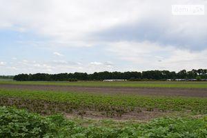 Продається земельна ділянка 280 соток у Вінницькій області