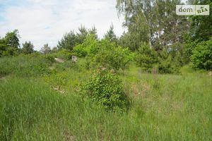 Продается земельный участок 10 соток в Черниговской области