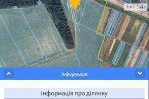 Продається земельна ділянка 87 соток у Закарпатській області