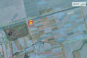 Продається земельна ділянка 50 соток у Чернігівській області