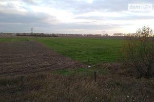 Продається земельна ділянка 195 соток у Житомирській області