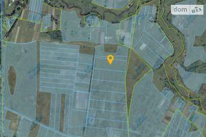 Продається земельна ділянка 200 соток у Волинській області