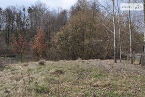 Продається земельна ділянка 41 соток у Житомирській області