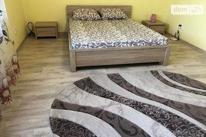 Сдается в аренду 1-комнатная квартира 53.6 кв. м в Ужгороде