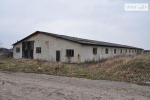 Сниму недвижимость в Козове долгосрочно