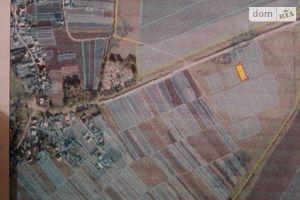 Куплю земельные участки на Домамориче без посредников