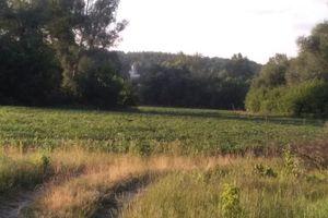 Продається земельна ділянка 2 соток у Сумській області